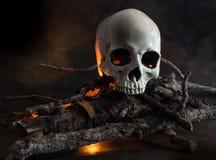 Human skull on wood fire Stock Photo