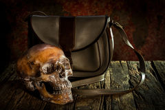 Human skull on wood and leather bags , royalty free stock photo