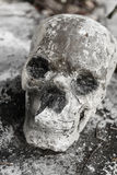 Human skulll in the temple. Human bone and skull in the temple in Thailand stock photos
