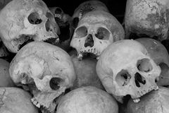 Human skulls. Close up of human skulls Stock Photography