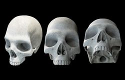 Human Skulls on Black Royalty Free Stock Photography