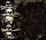 Human skulls and bones Royalty Free Stock Photos