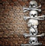 Human skulls and bones Stock Photography
