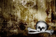 Human skulls and bones Royalty Free Stock Photos