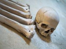 Human skulls and bones used as decoration stock image