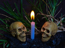 Human skulls with candle light dark background Stock Images