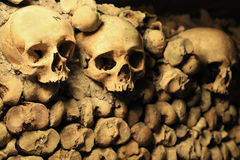 Human skulls in the catacombs of Paris. Photo taken at August 2014 Stock Images