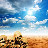 Human skulls in desert Royalty Free Stock Photography