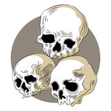 Human Skulls Icon Stock Photography