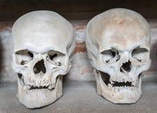 Human skulls inside a catacomb Stock Image
