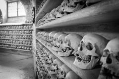 Human skulls inside a catacomb. Royalty Free Stock Image