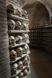 Human skulls inside a catacomb. Royalty Free Stock Images
