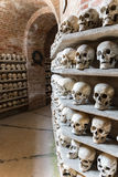 Human skulls inside a catacomb. Stock Images