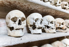 Human skulls inside a catacomb. Stock Photography