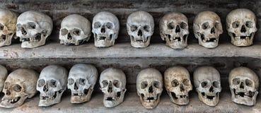 Human skulls inside a catacomb. Stock Image
