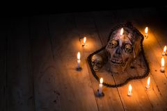 Human skulls lay on wooden floor and black background.  Stock Images
