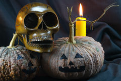Human skulls and pumpkin on black background, Halloween day background Stock Photo