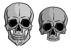 Human Skulls vector set Royalty Free Stock Image