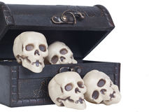 Human skulls in a wooden chest Stock Photography