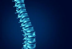 Human Spine Concept Royalty Free Stock Images