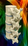 Human spine Stock Photos