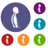 Human spine icons set Royalty Free Stock Photo