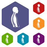 Human spine icons set hexagon royalty free illustration