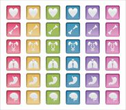 Human Systems Badges. Vector Shapes, concept of human systems badges or medical areas Royalty Free Stock Image
