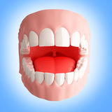 Human teeth 3d illustration Royalty Free Stock Photography