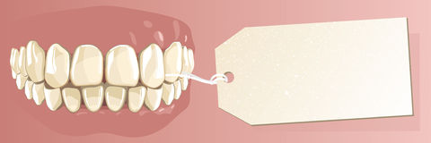 Human teeth and label Royalty Free Stock Photography