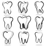 Human teeth set Stock Photo