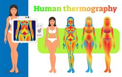 Human body heat thermography vector illustration. Woman body heat thermography illustration with three style variations royalty free illustration