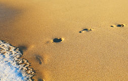 Human traces on the beach Stock Photography