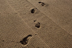 Human traces on sand Royalty Free Stock Photos