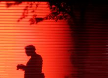 Human and tree shadow on red door. Royalty Free Stock Image