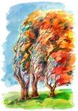 Human trees Stock Photos