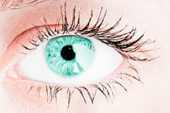 Human turquoise eye Royalty Free Stock Image