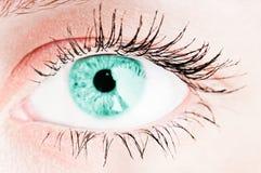Human turquoise eye royalty free stock image