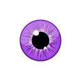 Human violet eyeball iris pupil isolated on white background. Eye Royalty Free Stock Photos