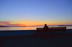 Human watching the sunset stock images
