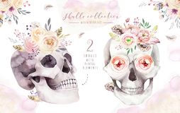 Human watercolor skull with floral bouquets. Head vintage helloween illustration. Retro tattoo death design Royalty Free Stock Photography