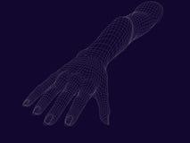 Human wireframe hand on dark background. 3D image vector illustration