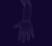Human wireframe hand on dark background. Stock Photography