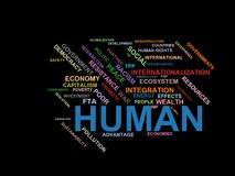 HUMAN - word cloud wordcloud - terms from the globalization, economy and policy environment Royalty Free Stock Photography