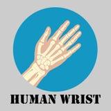 Human wrist emblem Royalty Free Stock Images