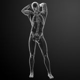 Human in x-ray view Stock Image