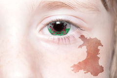Human& x27;s face with national flag and map of wales. Royalty Free Stock Photo