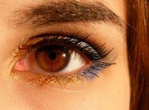 Human's Eyes Stock Image