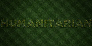 HUMANITARIAN - fresh Grass letters with flowers and dandelions - 3D rendered royalty free stock image Royalty Free Stock Photography