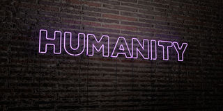 HUMANITY -Realistic Neon Sign on Brick Wall background - 3D rendered royalty free stock image. Can be used for online banner ads and direct mailers Royalty Free Stock Photo